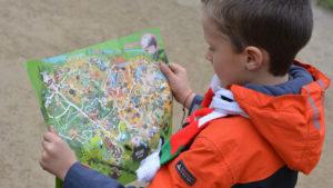 map dierentuin dieren jongen zoeken speuren