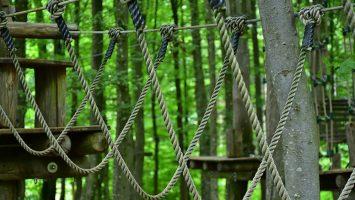 bos-klimmen-touwen-hout-feestje-buiten-natuur